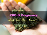 CBD & Pregnancy: What You Must Know?